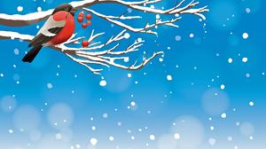 Bird Snow Winter 3840x2714 Wallpaper