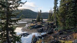 Landscape Forest Oregon River Coast Nature 6000x4000 Wallpaper