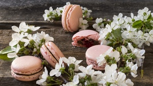 Macaron Sweets White Flower 6000x4000 Wallpaper