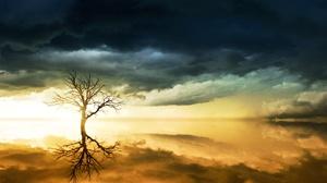Reflection Horizon Lonely Tree Cloud Ocean 6000x3376 Wallpaper