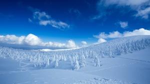 Cloud Forest Landscape Nature Sky Snow Winter 5120x2880 Wallpaper