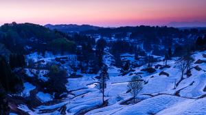 Tree Landscape Snow 2048x1374 Wallpaper