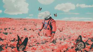 Digital Art Clouds Butterflies Astronaut Poppies Pink Flower Overcast NASA 1920x1080 Wallpaper