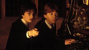 Daniel Radcliffe Harry Potter Ron Weasley Rupert Grint 3000x1966 wallpaper