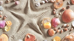Sand Shell Star 2880x1800 wallpaper