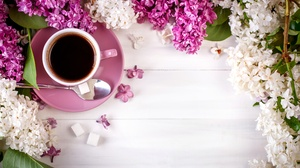 Coffee Cup Flower Pink Flower Still Life White Flower 5616x3744 Wallpaper