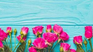 Flower Pink Flower Rose 3820x2550 Wallpaper