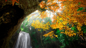 Earth Fall Foliage Waterfall 2048x1365 Wallpaper