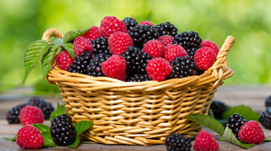 Basket Berry Blackberry Fruit Raspberry Still Life 4200x2884 wallpaper
