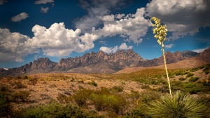 USA New Mexico Nature 2560x1440 Wallpaper