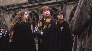 Daniel Radcliffe Emma Watson Harry Potter Hermione Granger Ron Weasley Rupert Grint 3000x1954 wallpaper