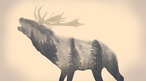 Stags Animals Long Exposure Forest Majestic Casual Channel Minimalism Elk Beige Double Exposure Pine 5186x3458 Wallpaper