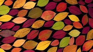 Fall Colorful 5184x3456 wallpaper