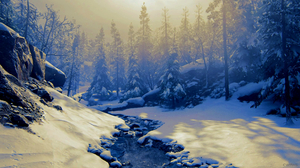 4Gamers Video Game Art Video Games Screen Shot Winter Naughty Dog The Last Of Us The Last Of Us 2 Sn 1920x1080 Wallpaper