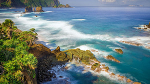 Coast Coastline Earth Horizon Mountain Ocean Rock Sea Tree 2560x1600 Wallpaper