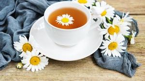 Cup Daisy Drink Tea White Flower 5030x3358 Wallpaper