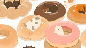 Animal Cat Doughnut 2000x1375 Wallpaper