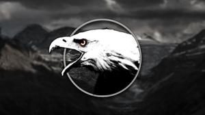 Black Amp White Circle Eagle Shapes 3840x2160 Wallpaper