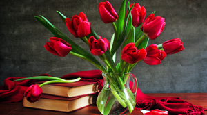Book Flower Pitcher Red Flower Scarf Still Life Tulip 2560x1600 Wallpaper