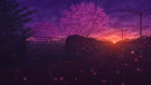 Elizabeth Miloecute Digital Art Starry Night Trees Street Street Light Fence Hedges 1920x1019 Wallpaper