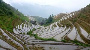 Nature Landscape Rice Paddy China 1920x1200 Wallpaper