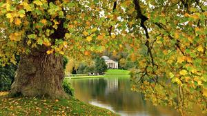 Earth England Fall Foliage River Stourhead Tree 1920x1276 Wallpaper