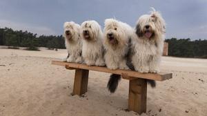 Sand Beach 3840x2160 wallpaper