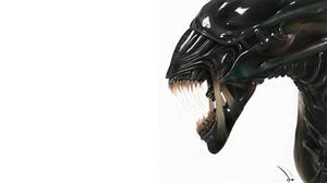 Alien Sci Fi Xenomorph Xenomorph Queen 1920x1080 Wallpaper
