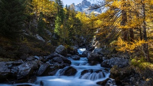 Fall Forest Mountain River Stone 5184x3456 Wallpaper