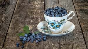 Berry Blueberry Cup Still Life 2048x1365 wallpaper