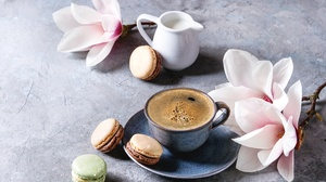 Coffee Cup Flower Macaron Still Life 5017x3345 wallpaper