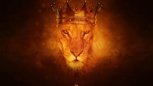 Emblem Galatasaray S K Lion Soccer 2560x1600 Wallpaper