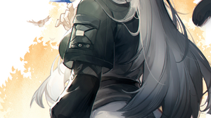 Anime Anime Girls Arknights Schwarz Arknights Spade M Birds Animal Ears Tail Cat Girl Grey Hair Yell 1696x2400 Wallpaper