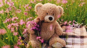 Flower Stuffed Animal Teddy Bear 5760x3840 Wallpaper