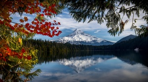 Forest Lake Mountain Nature Reflection 5000x2222 Wallpaper