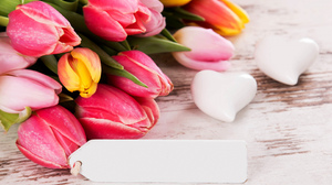 Flower Heart Tulip 2880x1800 Wallpaper
