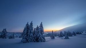 Nature Snow Tree Sunrise Landscape 2048x1365 Wallpaper