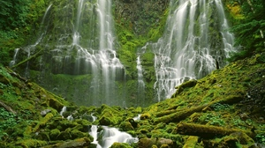 Moss Nature Vegetation Water Waterfall 1600x1200 wallpaper