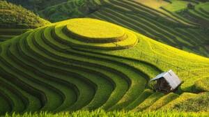 Landscape Field Rice Paddy 1920x1080 Wallpaper