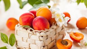 Fruit Peach Still Life 5616x3744 Wallpaper