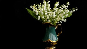 Flower Lily Of The Valley Pitcher White Flower 2700x1800 Wallpaper