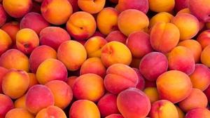 Apricot Fruit 5184x3888 Wallpaper