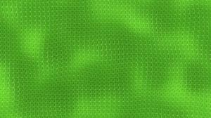 Green Texture 3000x2000 Wallpaper