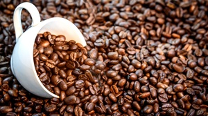 Coffee Beans Cup Pet 5361x3579 Wallpaper
