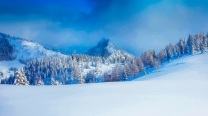 Alps Austria Earth Forest Mountain Snow Tree Winter 2000x1250 Wallpaper