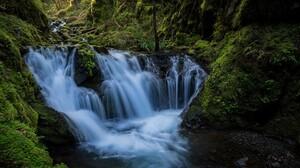 Forest Green Stream 1920x1200 wallpaper