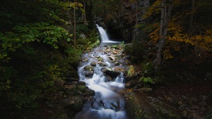 Nature River Waterfall Forest Long Exposure 1920x1080 Wallpaper