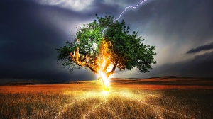 Field Lightning Manipulation Nature Tree 2508x1902 Wallpaper