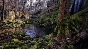 Nature Tree Moss Stone Stream 3840x2160 Wallpaper