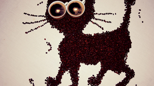 Cat Coffee Coffee Beans 3985x2905 wallpaper